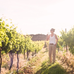 10 Reasons to go Wine Tasting in the Yakima Valley